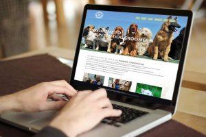 Website quan trọng như thế nào?